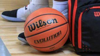 Wilson Evolution Indoor Basketball Review